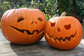 Don't waste your pumpkins this year!